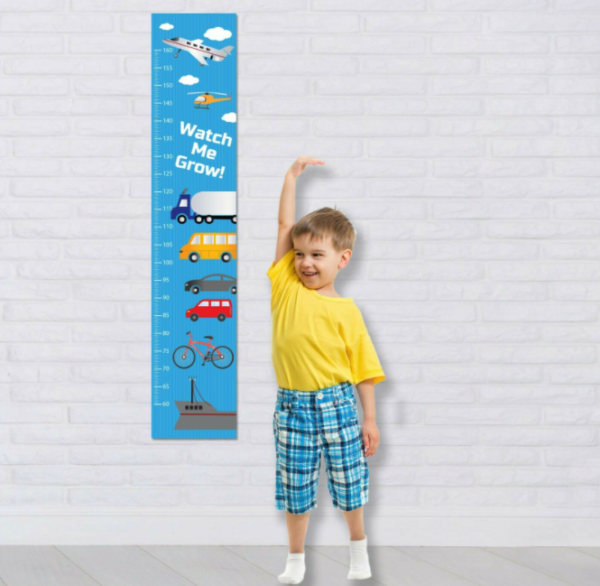 Cars Personalised fabric Boys Height Growth Chart